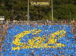 California Card Stunt