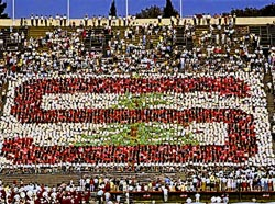 Stanford Card Stunt